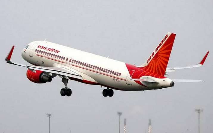 Air India flight returns to Delhi airport half hour after take off as cabin crew sees bat