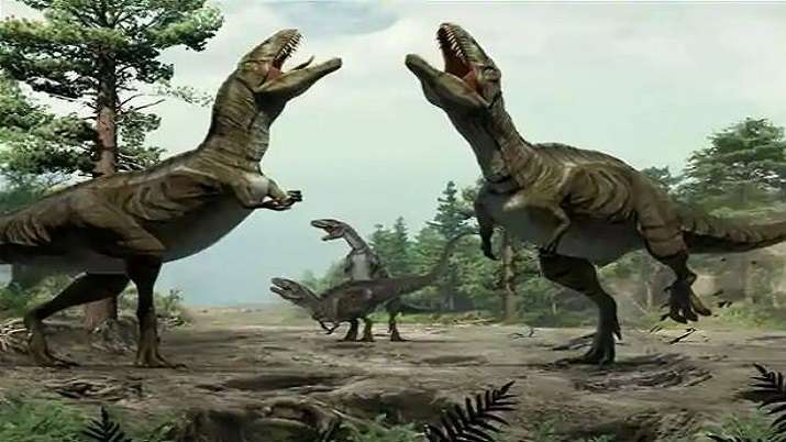 100 million-year-old bones of sauropod dinosaurs discovered in Meghalaya