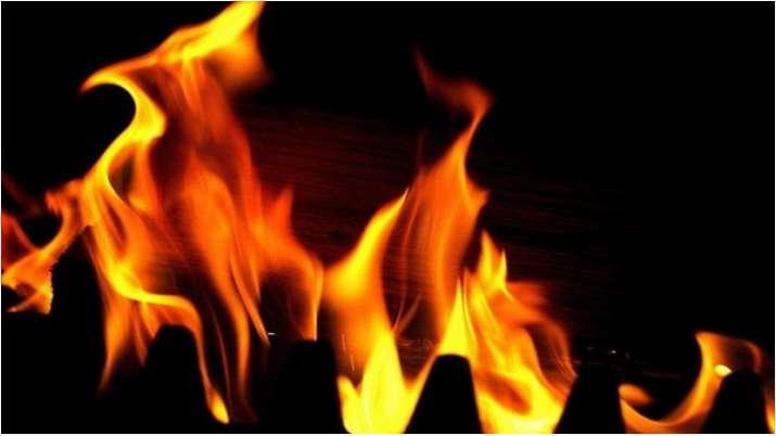 noida news, noida fire, noida barola fire, noida sector 49 fire, noida fire news, n
