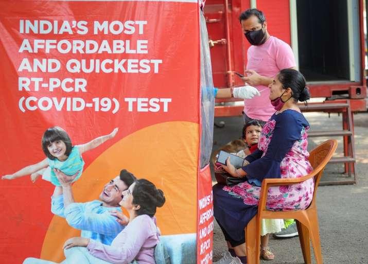 gujarat covid19 test report