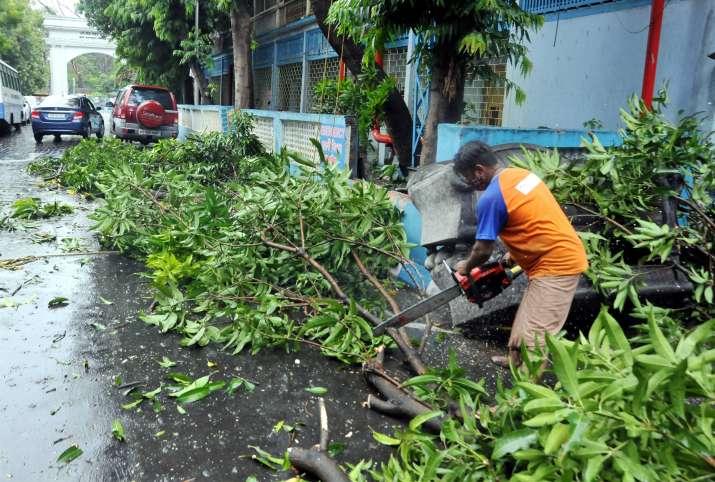 India Tv - Kolkata: Kolkata Municipal Corporation worker cuts tree branches after a few trees uprooted due to strong wind induced by Cyclone Yaas, in Kolkata, Tuesday, May 25, 2021.