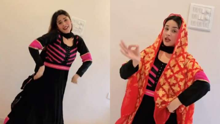 Shehnaaz Gill's 'thumkas' on Punjabi song 'Deor De Vyah Vich' leaves fans excited. Watch video