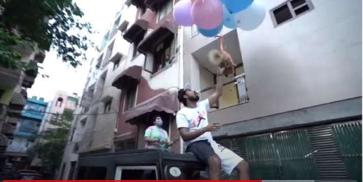 The dog is strapped to a bunch of balloons and is set loose