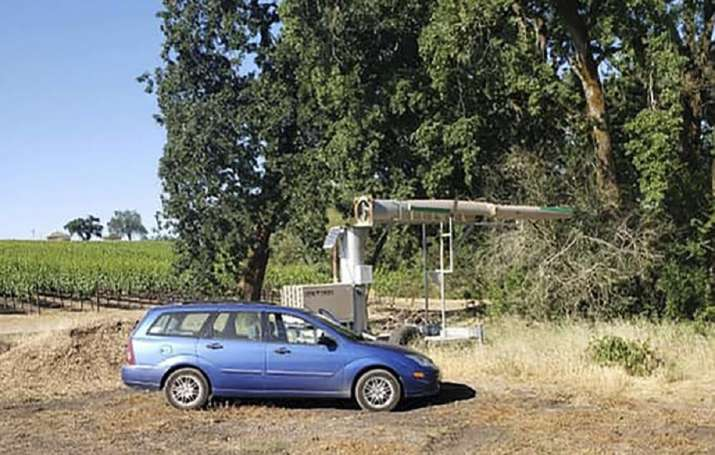 california giant fan