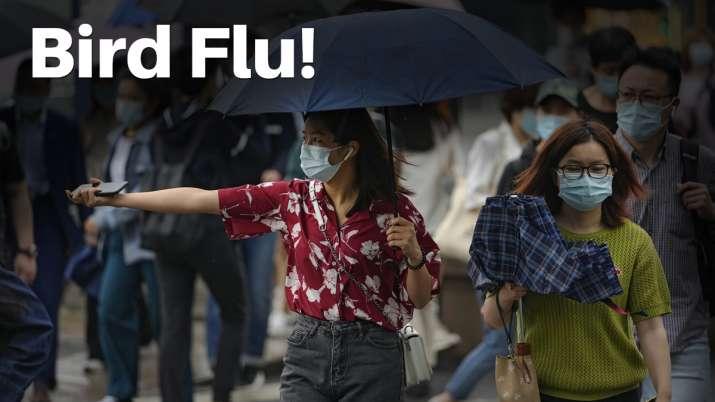 h10n3,bird flu,china bird flu,china lockdown,new virus in china,china new virus