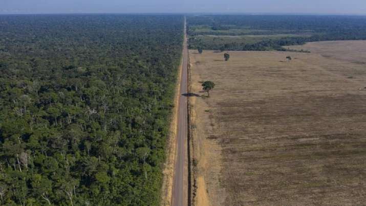 National Institute for Space Research, Record levels, deforestation, Brazilian, Amazon continue, Bra