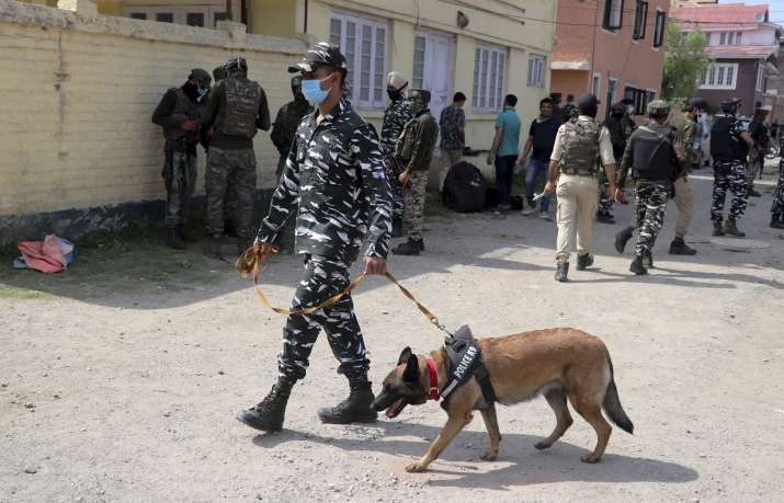J-K: Grenade attack on CRPF vehicle in Pulwama's Tral