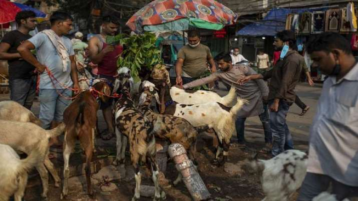 cow sacrifice banned on bakrid