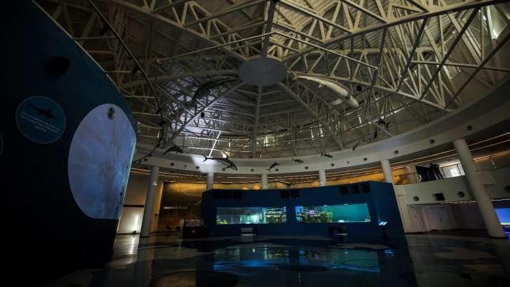 India Tv - Aquatics Gallery Gujarat