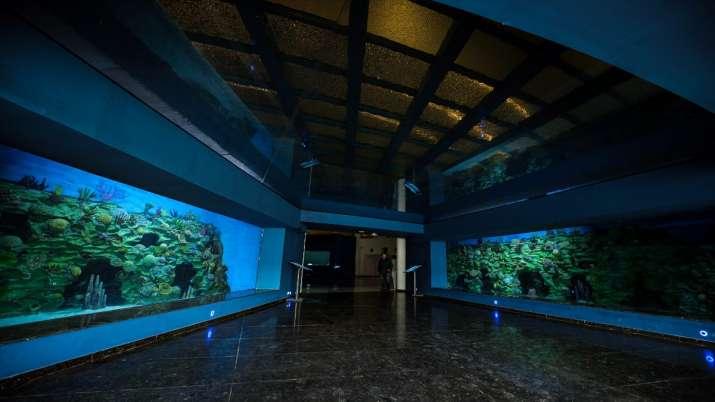 India Tv - Aquatics Gallery in Gujarat