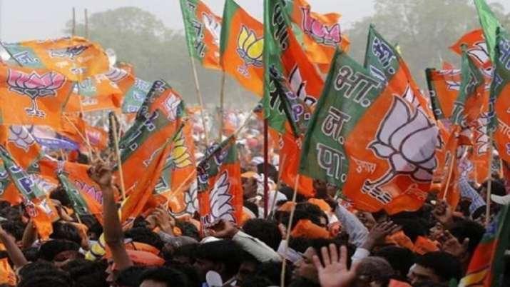 BJP, allies win 67 of 75 seats inUP Zila Panchayat