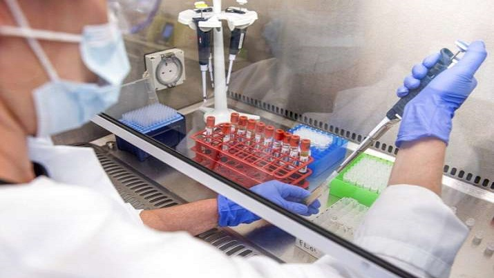 COVID-19 most likely of natural origin, not leaked from lab: Study