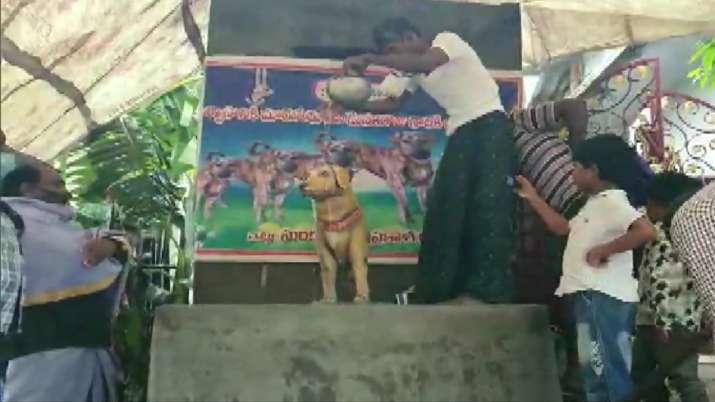 India Tv - Andhra Man installs dog statue