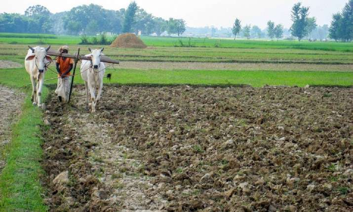 Rajasthan farmers to get Rs 1,000 monthly grant under Kisan