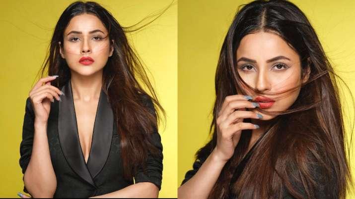 Los fanáticos no pueden mantener la calma ya que extrañan a Shehnaaz Gill, también conocido como 'Punjab ki Katrina Kaif';  este es el por qué