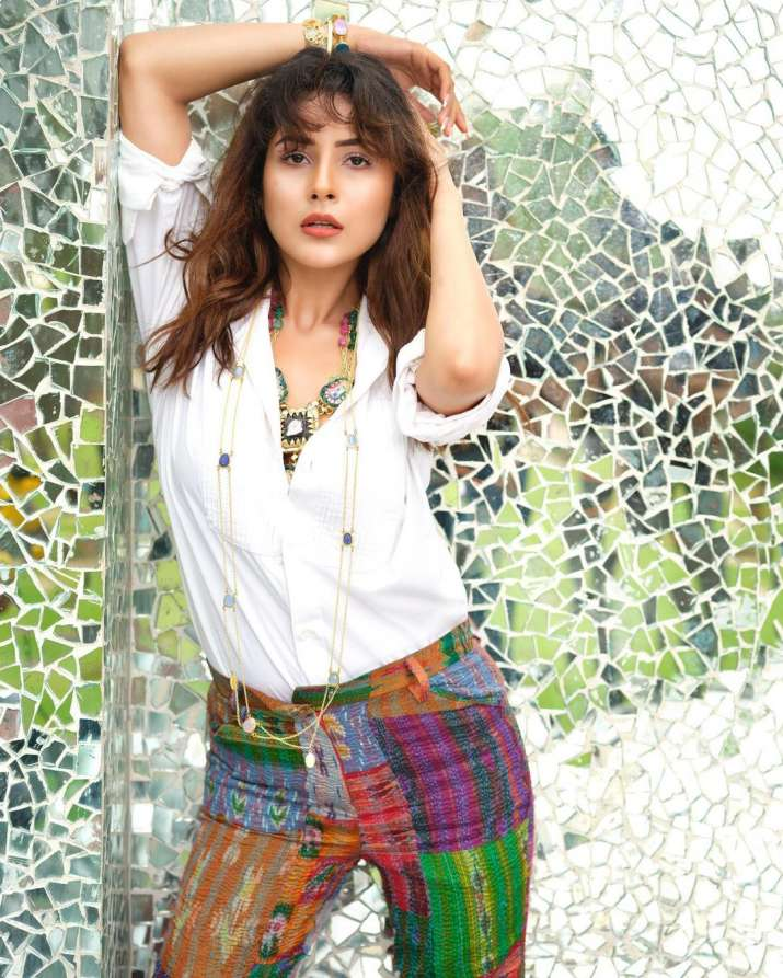 India Tv - Shehnaaz Gill sets the temperature soaring with latest photos