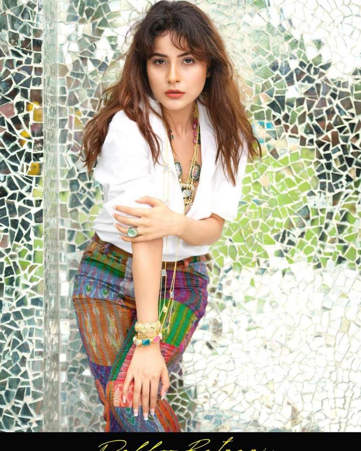 India Tv - Shehnaaz Gill raises the mercury with the latest pics