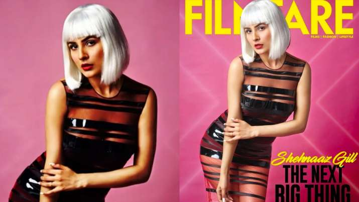 Shehnaaz Gill showcases her inner 'sexy siren' in latest photoshoot; fans call her 'the next big th