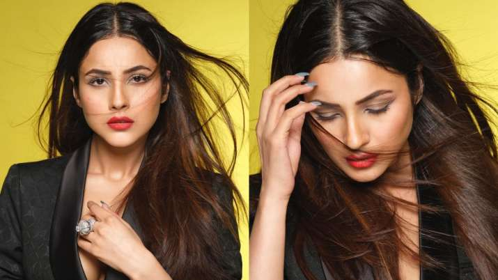 Shehnaaz Gill goes all black in latest photoshoot with Dabboo Ratnani; fans call Bigg Boss 13 contes