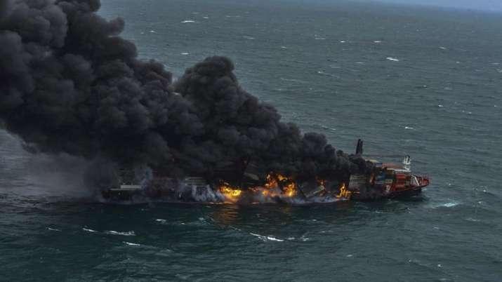 176 turtles, 20 dolphins, SEA ANIMALS dead, cargo ship fire, Sri Lanka, sri lanka latest internation