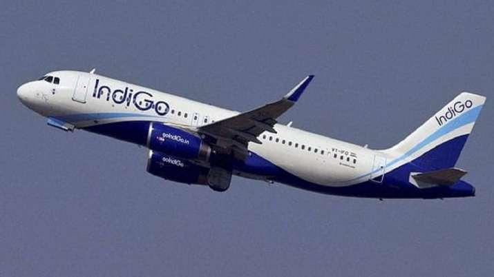 IndiGo, IndiGo launches, indigo special fares, indigo 15 year anniversary, indigo latest news, natio