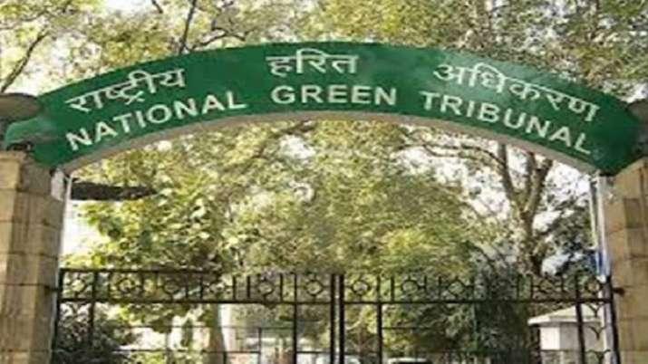 NGT, NGT directION, Gurgaon municipal corporation, action, encroachment, Palam Vihar, latest nationa
