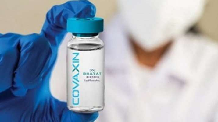 covaxin phase 2/3 trial