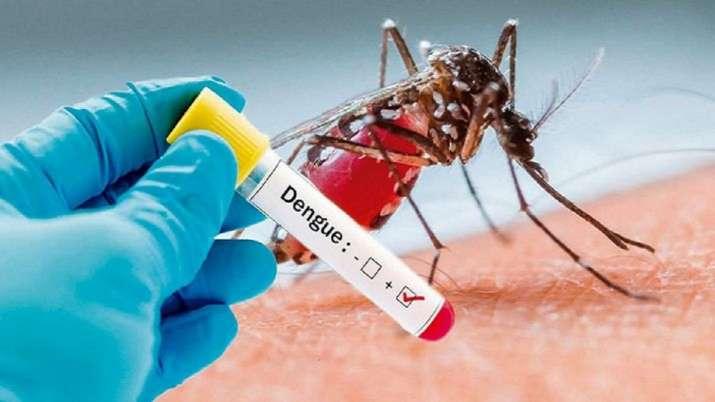 MALARIA, DENGUE, CHIKUNGUNYA
