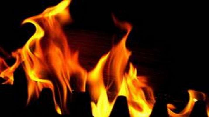 Delhi: Fire breaks out at cardboard godown in Dabri; 14 fire tenders rushed to spot