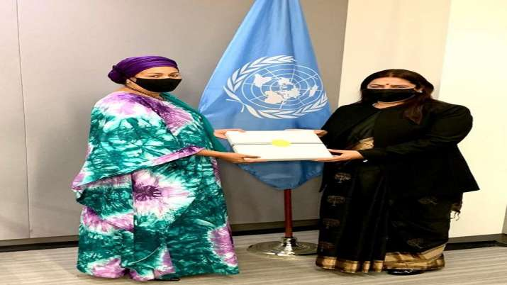 Meenakashi Lekhi, United Nations, UN Deputy Secretary General, Amina Mohammed, regional issues, late