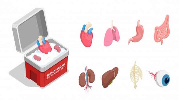 organ donation law, path breakeR, communal harmony, Kerala High Court, latest national news updates,