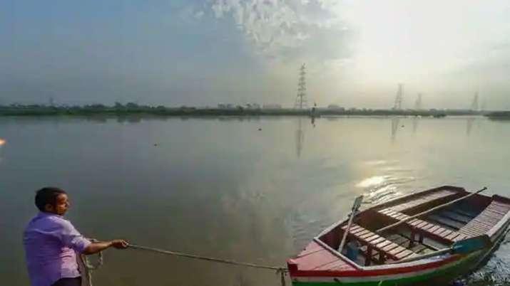 contaminated goa river