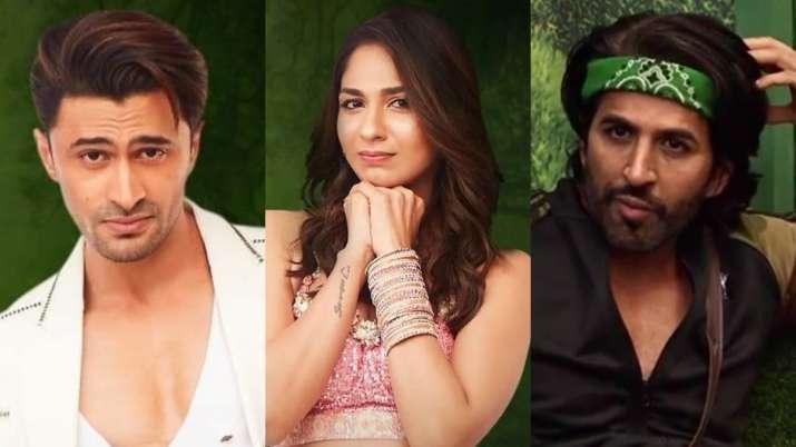 Bigg Boss 15 Highlights: Afsana Khan, Ieshaan Sehgaal, Vidhi Pandya, Akasa and Vishal Kotian get nominated