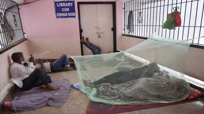 Pakistan: Islamabad witnesses spike in dengue cases; total tally now 3,206