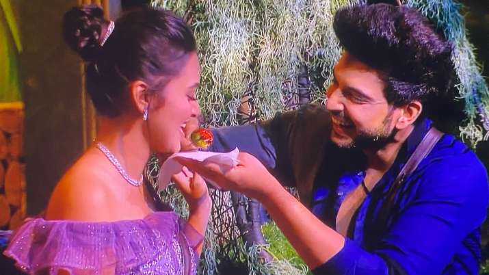 Bigg Boss 15: Karan Kundrra confesses having crush on Tejasswi Prakash, Akasa bets feeling is mutual