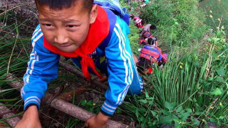 Children as young as six years old have to scale a deadly cliff of 800 metres. - India Tv
