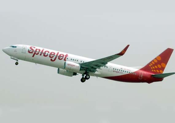 spicejet shares continue to plunge down 17