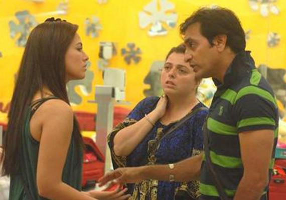 Bigg Boss: Delnaaz-Rajeev-Sana, a love triangle in the house