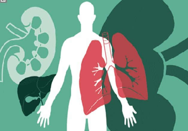 only one percent indians donate organs experts