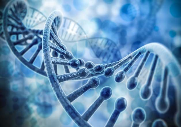most people carry recessive disease mutations