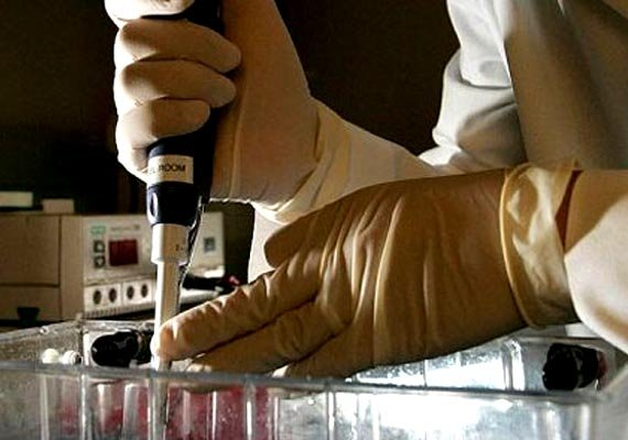 why testosterone may increase prostate cancer risk