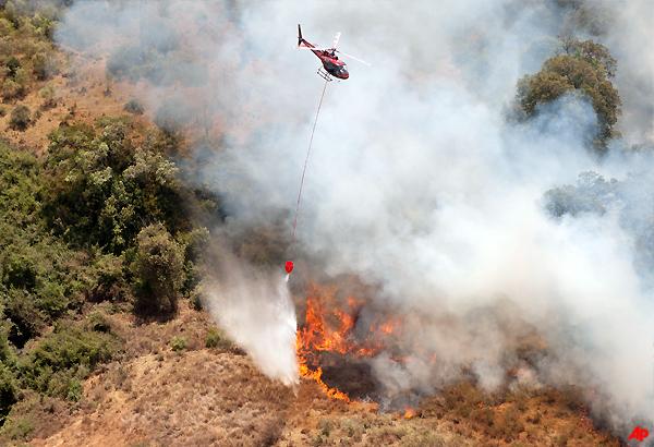elephants flee as fire burns on mount kenya slopes