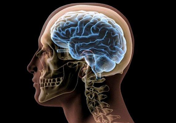 chinese woman alive despite brain s key area missing