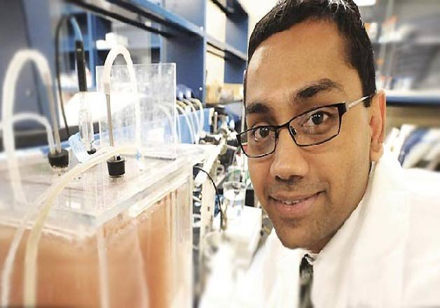 indian american professor wins 625 000 macarthur