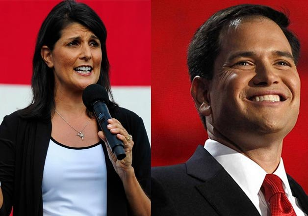 us presidential elections indo american nikki haley