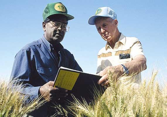 indian plant scientist sanjaya rajaram wins world food prize