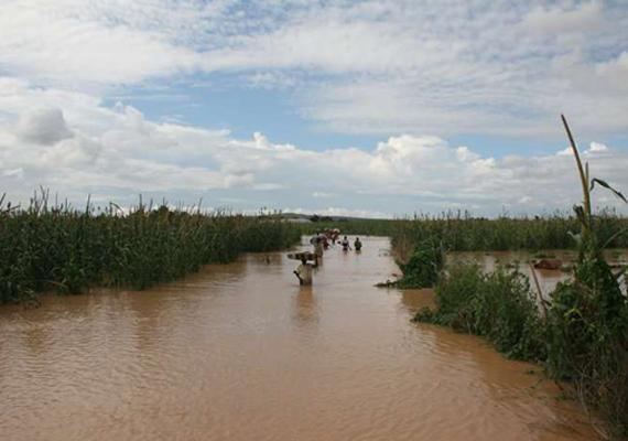10 killed 20 000 displaced in nigeria flood