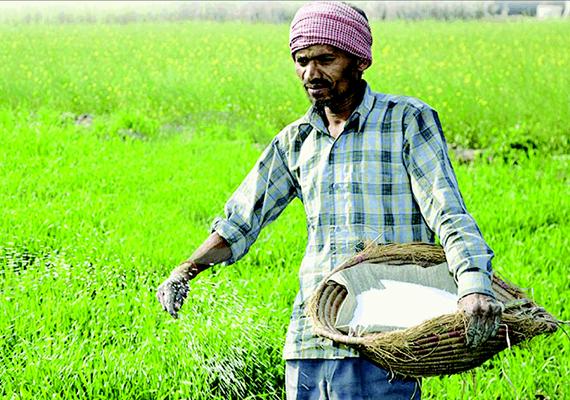 direct transfer of fertilizer subsidy lpg kerosene cash