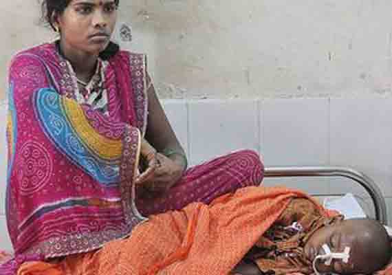 encephalitis claims 623 lives eastern up this year