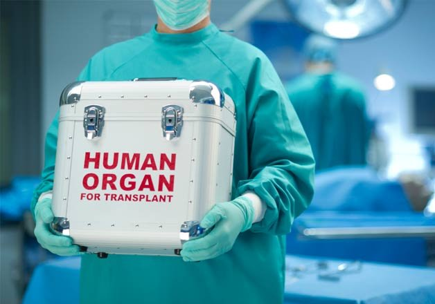 5-year old girl donates her organs to 6 needy people | India